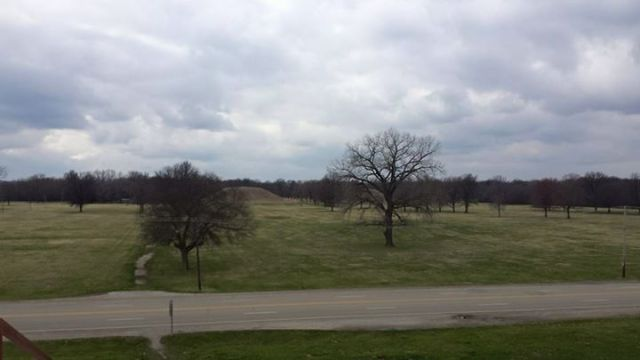 Here's a view of the mounds from the first terrace of Monk's Mound. The city would have spread out in all directions from this view.